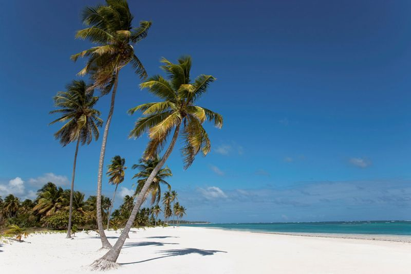 Dónde viajar en diciembre que haga calor: Punta Cana