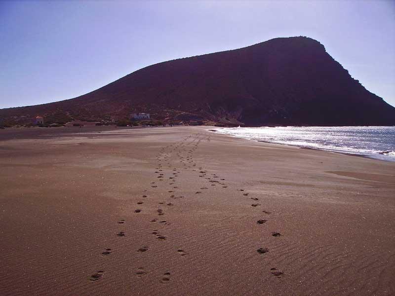 Las 8 mejores playas de Tenerife 1