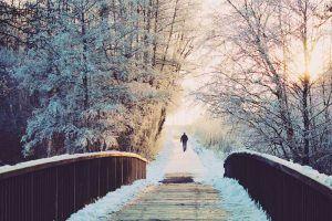 puente de diciembre