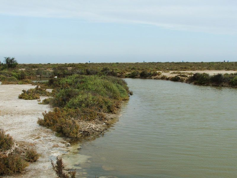 que ver cerca de roquetas de mar